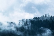fog-1535201_1920